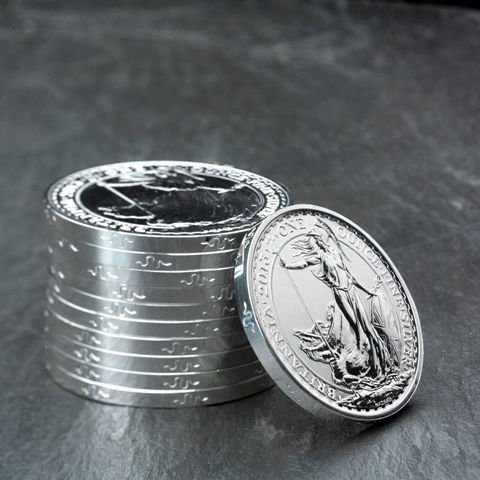 2013 1 oz Snake Privy British Silver Britannia Coin